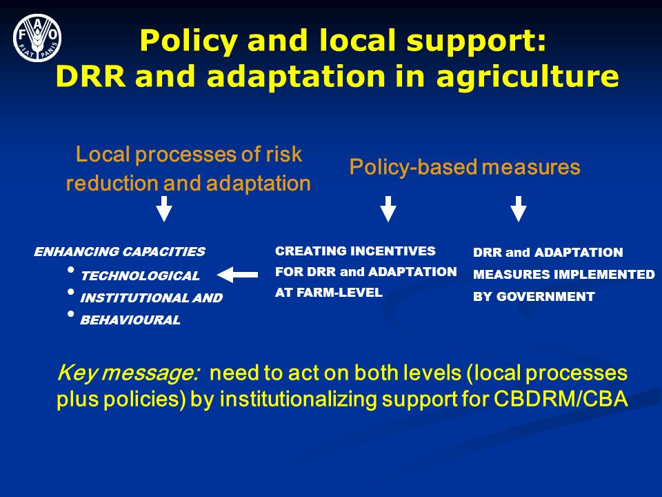 Policy and local support: DRR and adaptation in agriculture ENHANCING CAPACITIES TECHNOLOGICAL INSTITUTIONAL AND BEHAVIOURAL Policy-based measures CRE