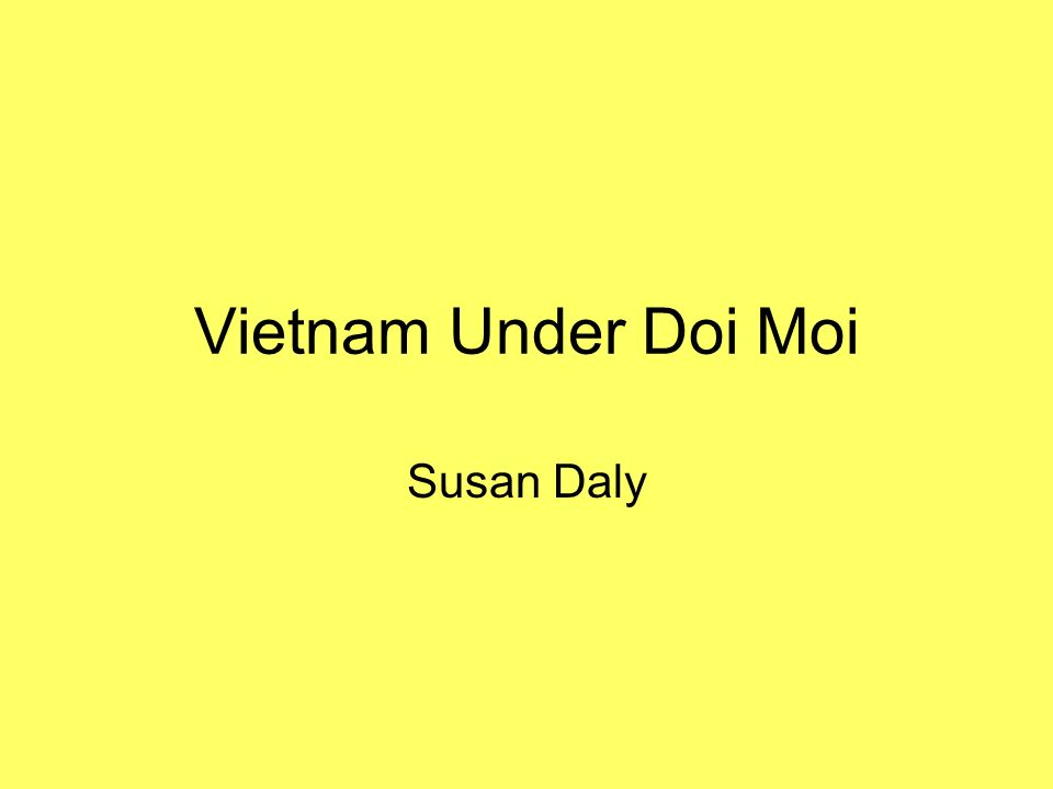 Vietnam Under Doi Moi Susan Daly