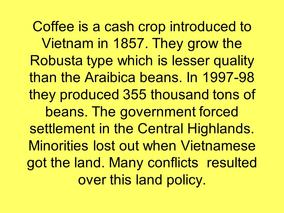 Coffee is a cash crop introduced to Vietnam in 1857.