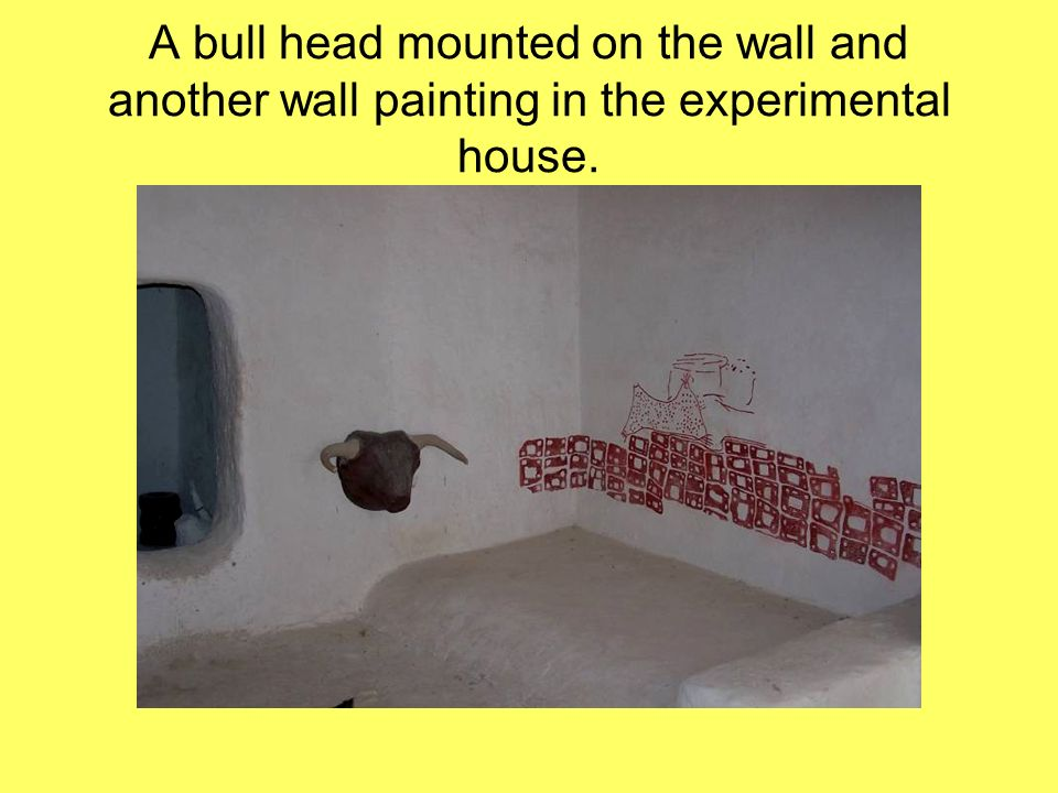 A bull head mounted on the wall and another wall painting in the experimental house.