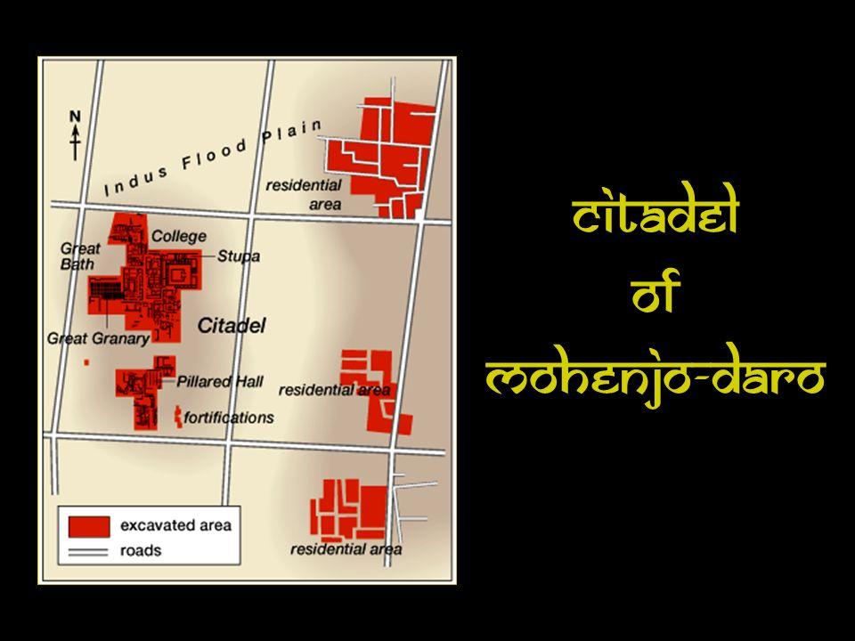 Citadel Of Mohenjo-Daro