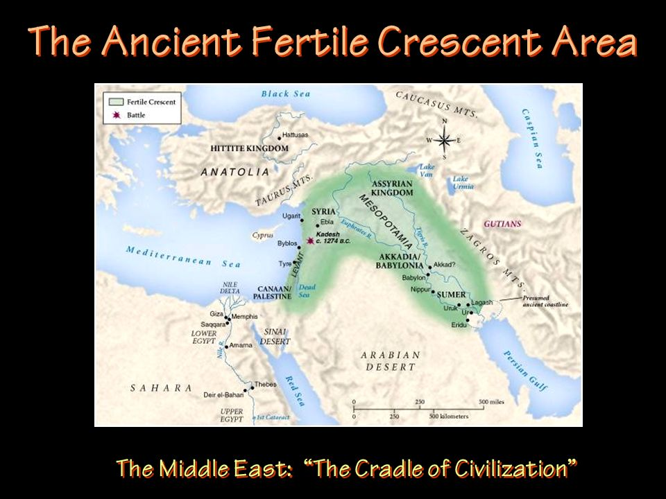 The Ancient Fertile Crescent Area The Middle East: The Cradle of Civilization
