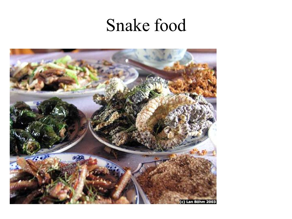 Snake food