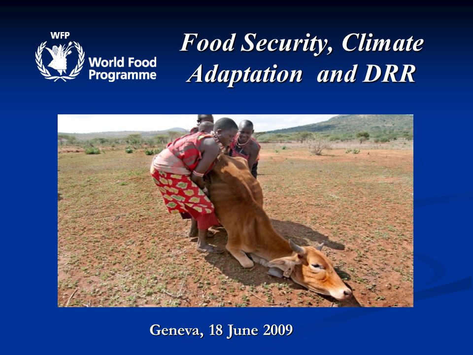 Food Security, Climate Adaptation and DRR Geneva, 18 June 2009