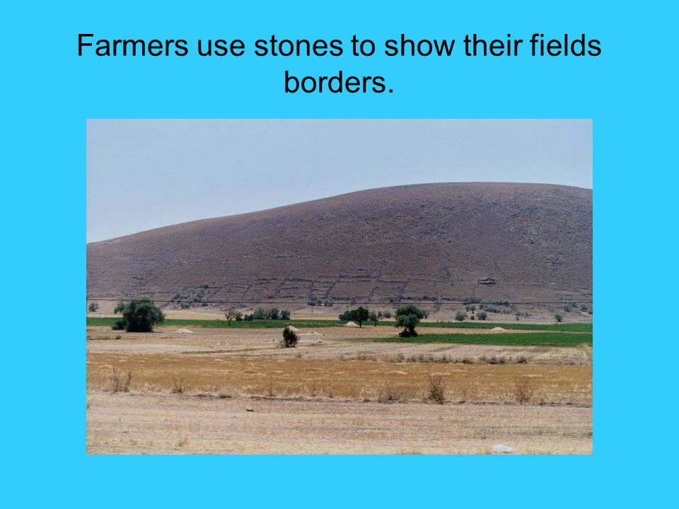 Farmers use stones to show their fields borders.