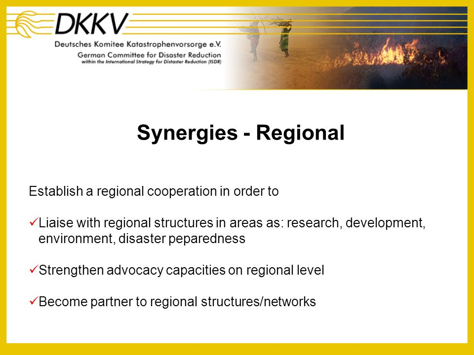 Synergies - Regional Establish a regional cooperation in order to Liaise with regional structures in areas as: research, development, environment, dis