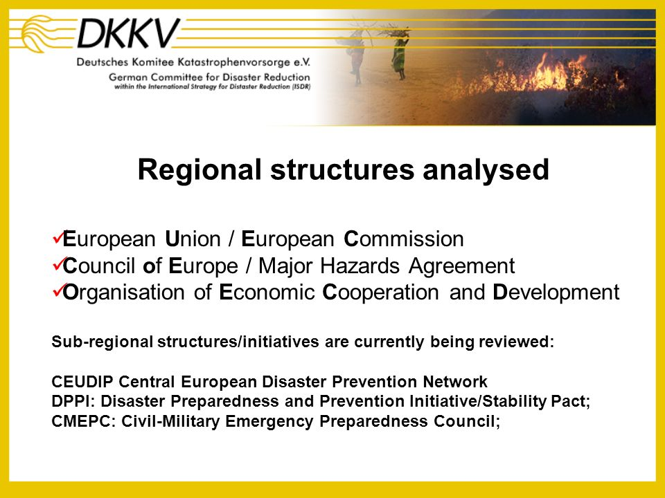 A network of European National Platforms and Focal Points for Natural Disaster Reduction Work Plan Initial elements of the first phase of the network will be among others to: Build on existing information on European national platforms as part of the UN/ISDR Strengthening the Network of European National Platforms initiative collected by DKKV Examine the possibility of establishing a two to three year programme of seminars to be hosted by one or several of the networks members in the field of technical and scientific issues of importance to European countries, such as Early Warning or adaptation to climate change