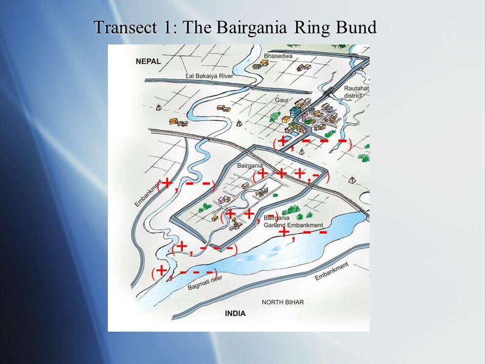 Transect 1: The Bairgania Ring Bund +, - - ( +, - - ) ( +, - - - ) ( + + +,- ) ( + +, - ) ( +, - - - )