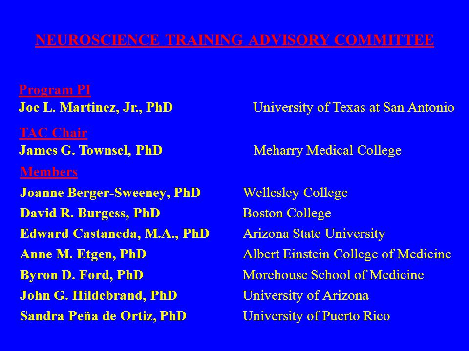 Members Joanne Berger-Sweeney, PhD Wellesley College David R. Burgess, PhD Boston College Edward Castaneda, M.A., PhD Arizona State University Anne M.