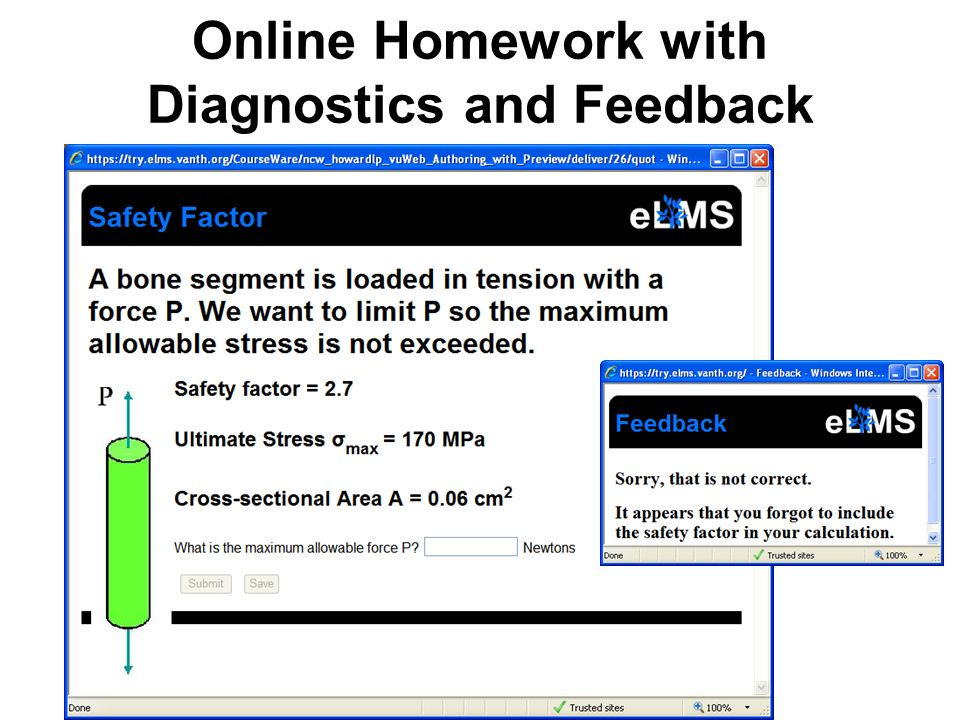 Online Homework with Diagnostics and Feedback