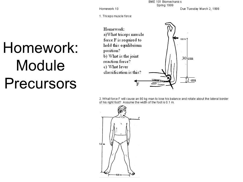 Homework: Module Precursors
