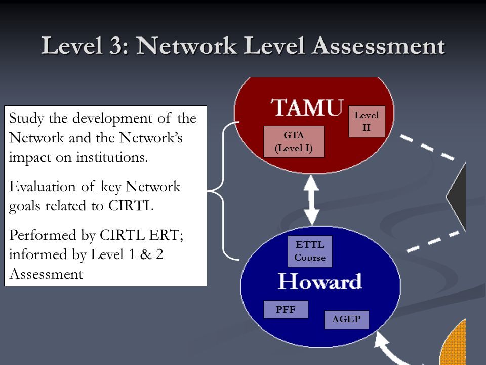Level 3: Network Level Assessment GTA (Level I) Level II PFF AGEP ETTL Course Study the development of the Network and the Networks impact on institutions.