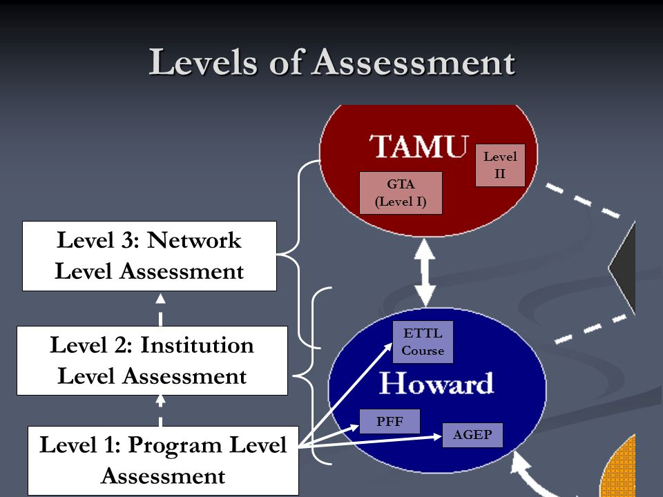 Levels of Assessment GTA (Level I) Level II PFF AGEP ETTL Course Level 3: Network Level Assessment Level 2: Institution Level Assessment Level 1: Program Level Assessment