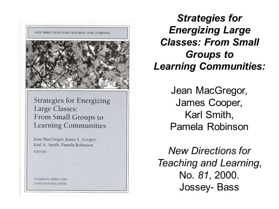 Strategies for Energizing Large Classes: From Small Groups to Learning Communities: Jean MacGregor, James Cooper, Karl Smith, Pamela Robinson New Dire