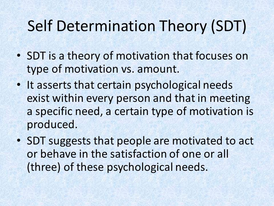 Self Determination Theory (SDT) SDT is a theory of motivation that focuses on type of motivation vs.