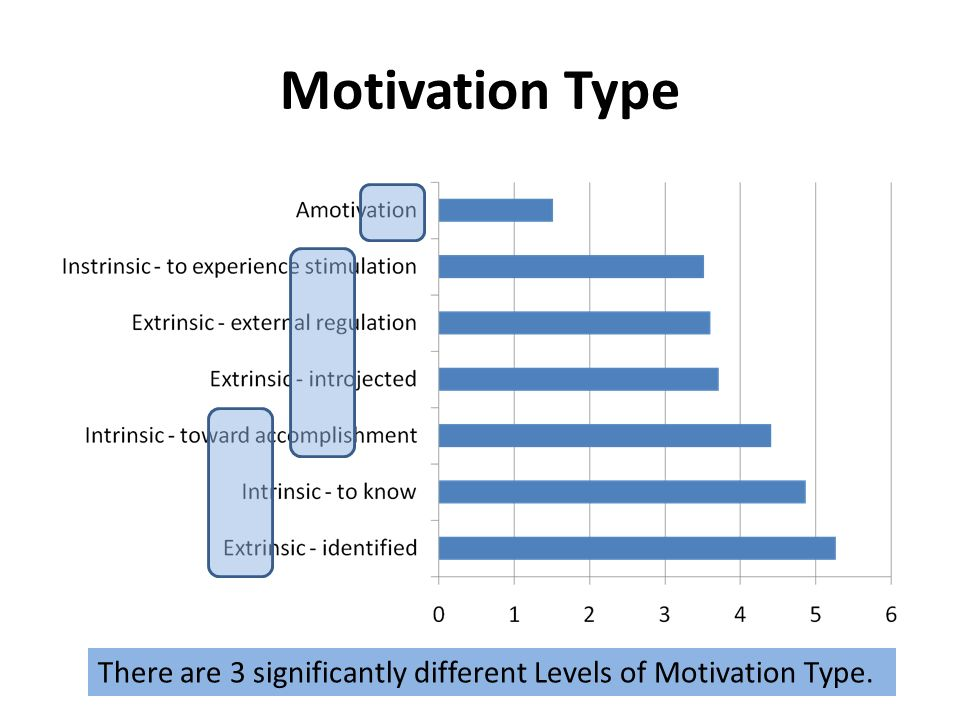 Motivation Type There are 3 significantly different Levels of Motivation Type.