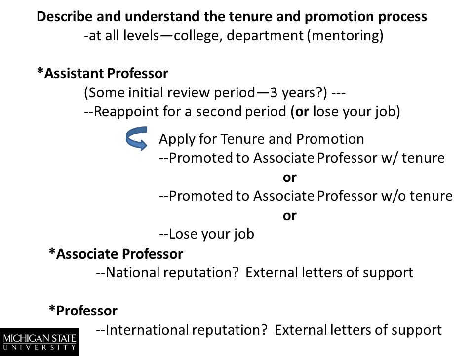 Describe and understand the tenure and promotion process -at all levelscollege, department (mentoring) *Assistant Professor (Some initial review period3 years ) --- --Reappoint for a second period (or lose your job) Apply for Tenure and Promotion --Promoted to Associate Professor w/ tenure or --Promoted to Associate Professor w/o tenure or --Lose your job *Associate Professor --National reputation.
