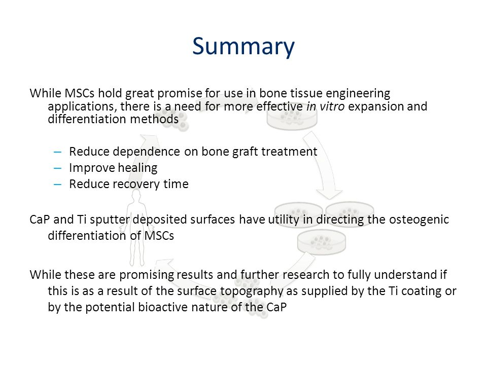 Summary While MSCs hold great promise for use in bone tissue engineering applications, there is a need for more effective in vitro expansion and diffe