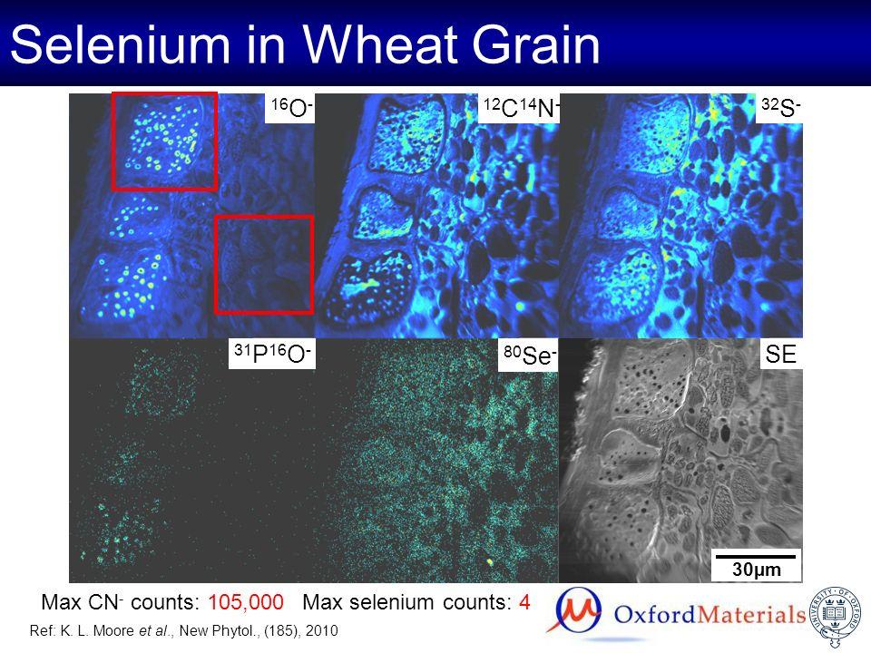 Selenium in Wheat Grain Max selenium counts: 4Max CN - counts: 105,000 31 P 16 O - 80 Se - 32 S -12 C 14 N -16 O - SE 30µm Ref: K. L. Moore et al., Ne