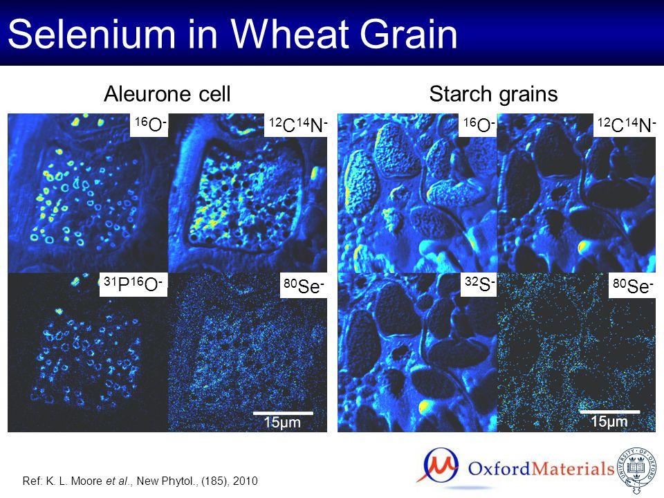 Selenium in Wheat Grain Aleurone cellStarch grains 31 P 16 O - 80 Se - 32 S - 12 C 14 N - 16 O - 12 C 14 N - 16 O - 80 Se - Ref: K. L. Moore et al., N