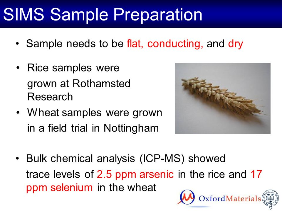 SIMS Sample Preparation Sample needs to be flat, conducting, and dry Bulk chemical analysis (ICP-MS) showed trace levels of 2.5 ppm arsenic in the ric