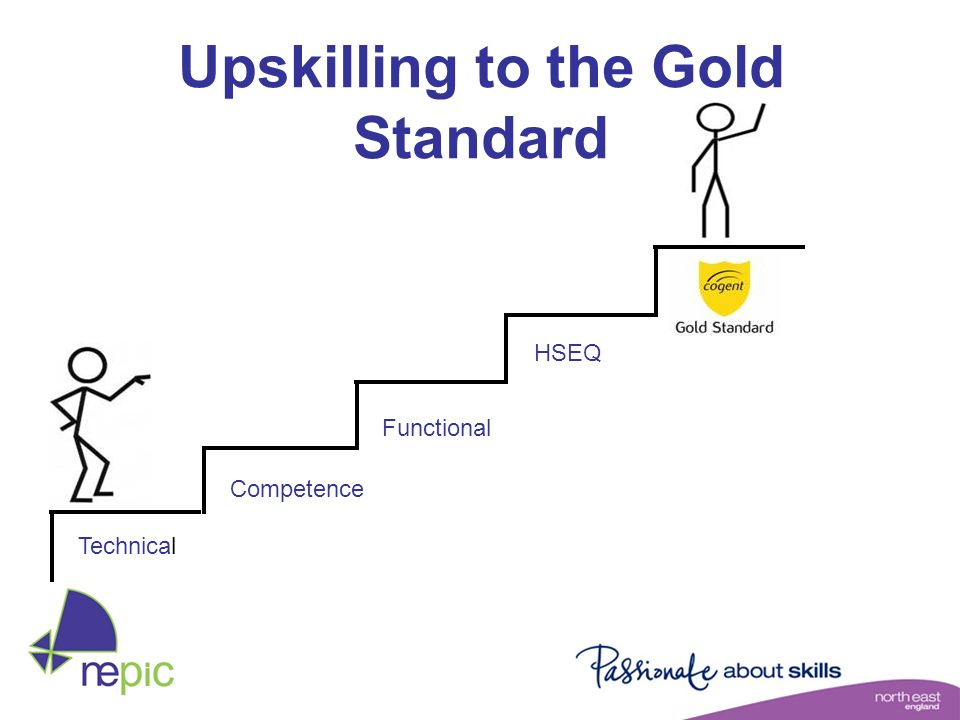 Upskilling to the Gold Standard Technical Competence Functional HSEQ