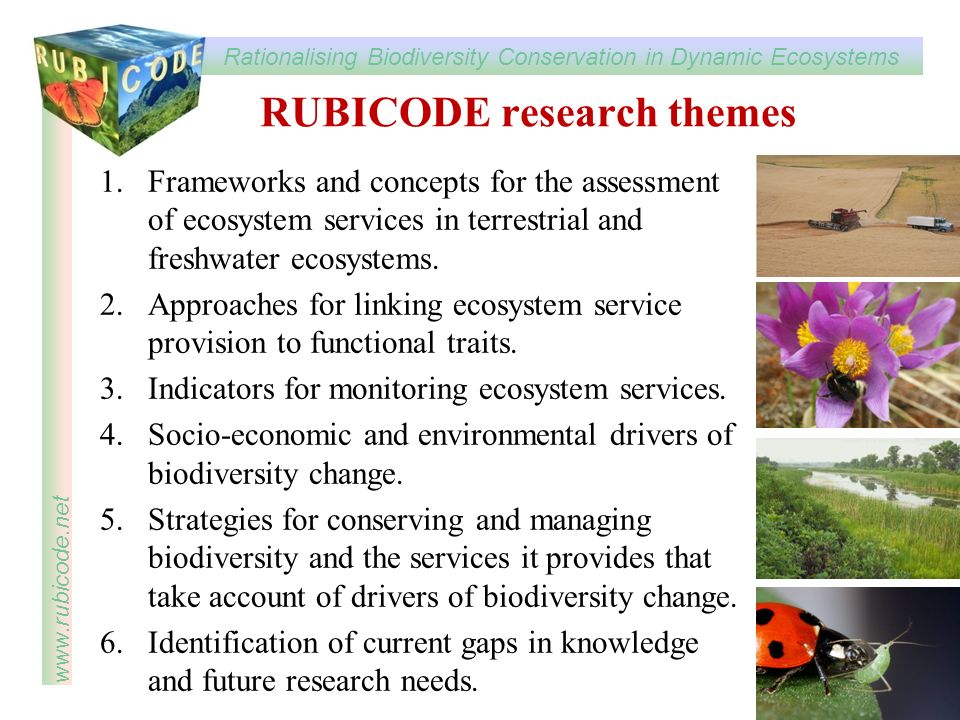 Rationalising Biodiversity Conservation in Dynamic Ecosystems www.rubicode.net RUBICODE research themes 1.Frameworks and concepts for the assessment of ecosystem services in terrestrial and freshwater ecosystems.