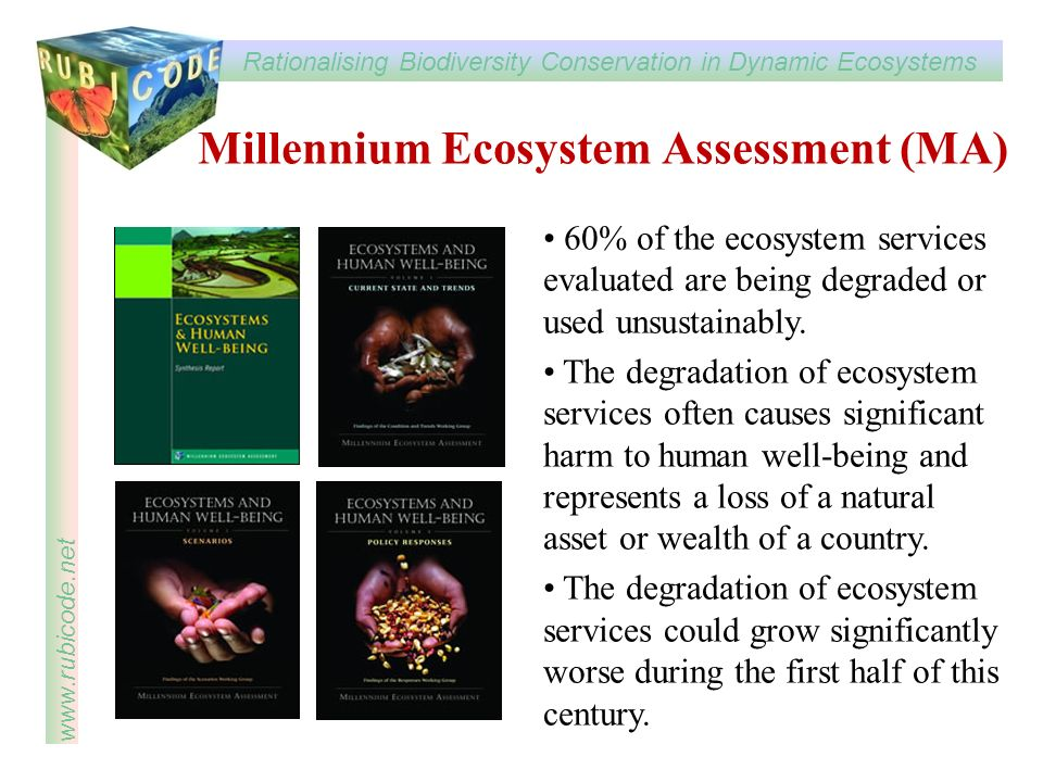 Rationalising Biodiversity Conservation in Dynamic Ecosystems www.rubicode.net Millennium Ecosystem Assessment (MA) 60% of the ecosystem services evaluated are being degraded or used unsustainably.