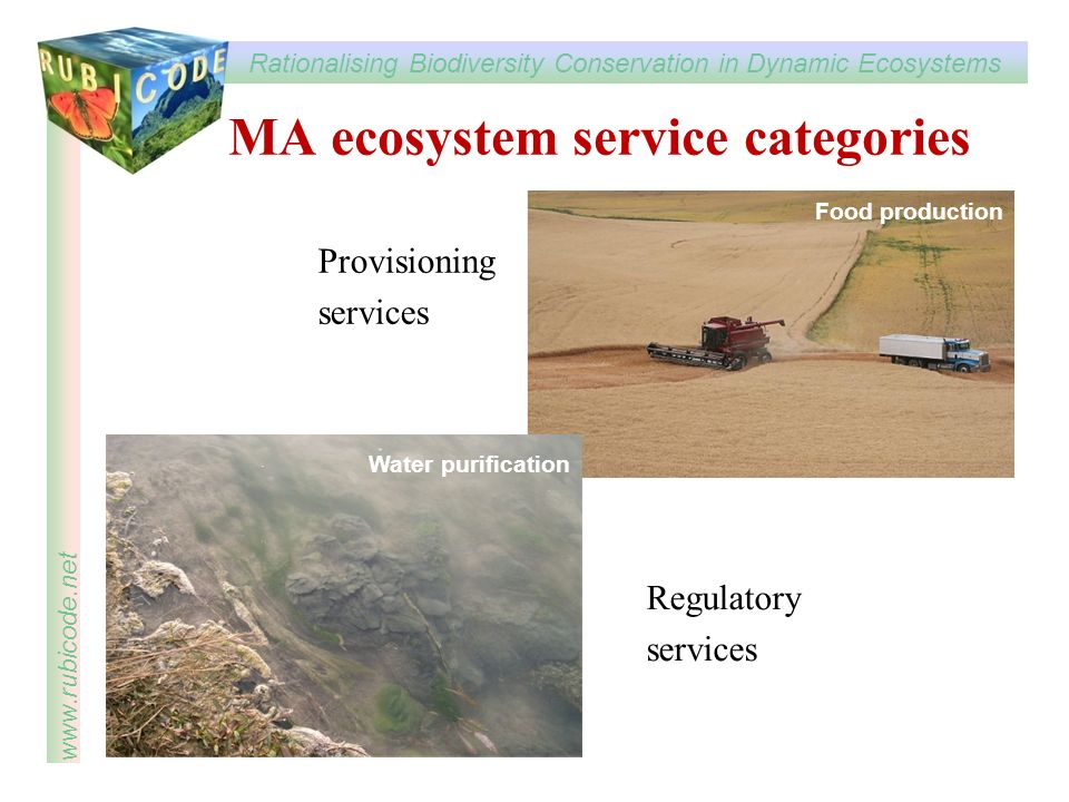 Rationalising Biodiversity Conservation in Dynamic Ecosystems www.rubicode.net MA ecosystem service categories Provisioning services Regulatory services Pest control Food production Water purification