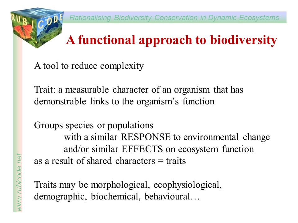 Rationalising Biodiversity Conservation in Dynamic Ecosystems www.rubicode.net A functional approach to biodiversity A tool to reduce complexity Trait