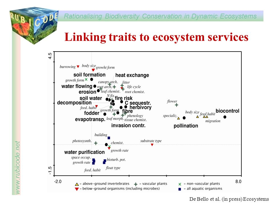Rationalising Biodiversity Conservation in Dynamic Ecosystems www.rubicode.net Linking traits to ecosystem services De Bello et al. (in press) Ecosyst