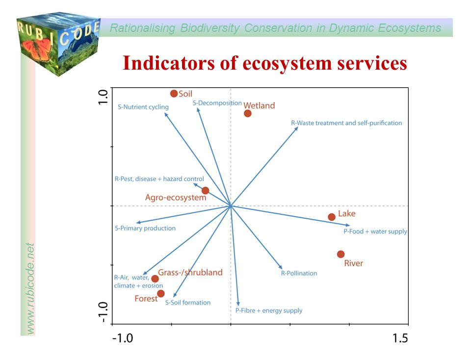 Rationalising Biodiversity Conservation in Dynamic Ecosystems www.rubicode.net Indicators of ecosystem services