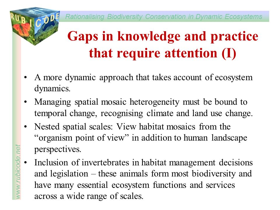 Rationalising Biodiversity Conservation in Dynamic Ecosystems www.rubicode.net Gaps in knowledge and practice that require attention (I) A more dynami