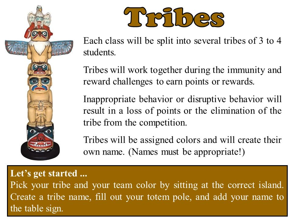Each class will be split into several tribes of 3 to 4 students. Tribes will work together during the immunity and reward challenges to earn points or