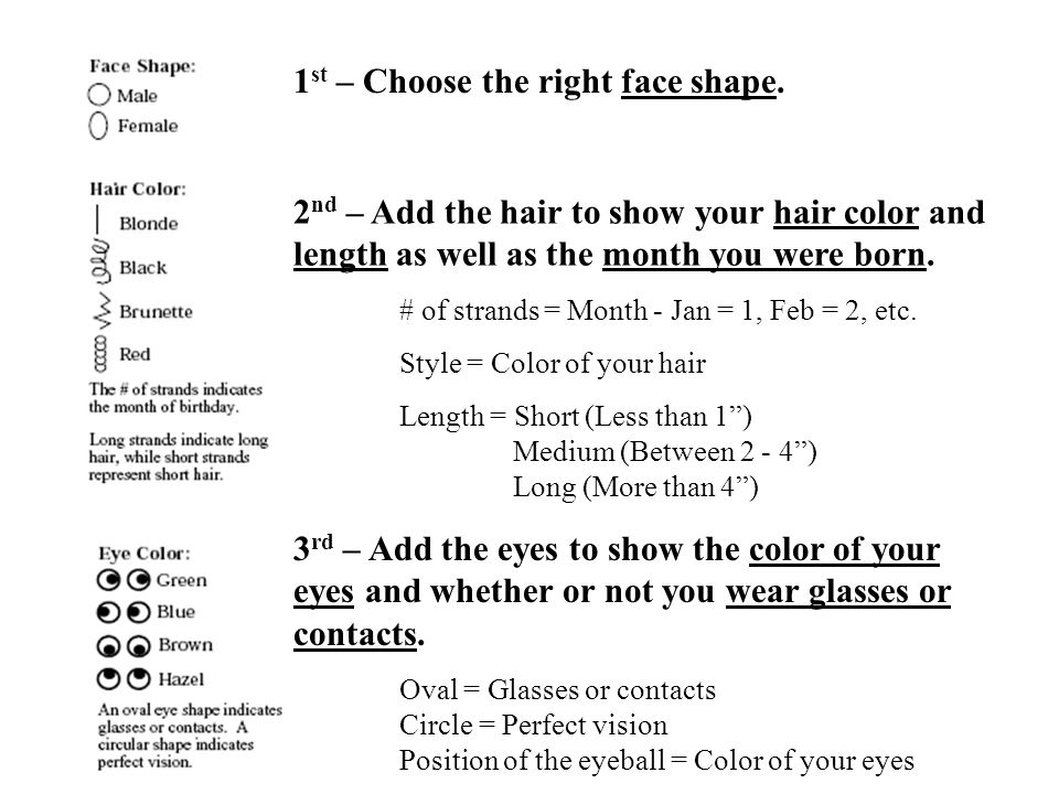 1 st – Choose the right face shape. 2 nd – Add the hair to show your hair color and length as well as the month you were born. # of strands = Month -