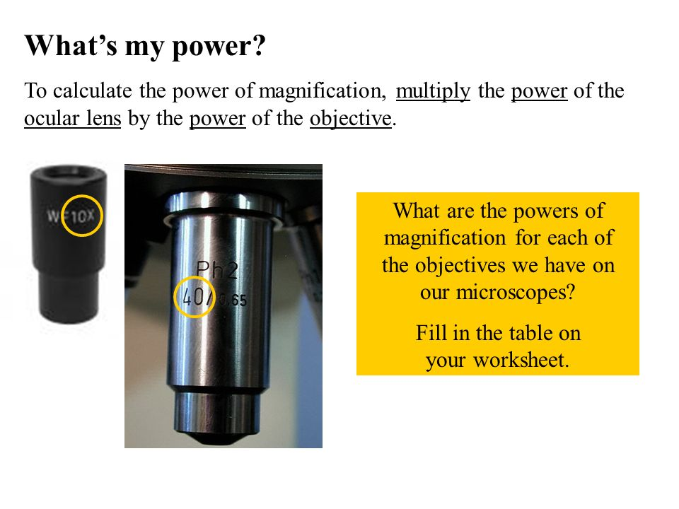 Whats my power? To calculate the power of magnification, multiply the power of the ocular lens by the power of the objective. What are the powers of m