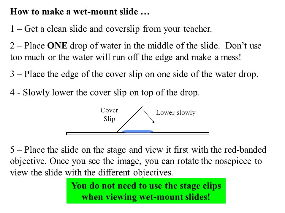 How to make a wet-mount slide … 1 – Get a clean slide and coverslip from your teacher. 2 – Place ONE drop of water in the middle of the slide. Dont us