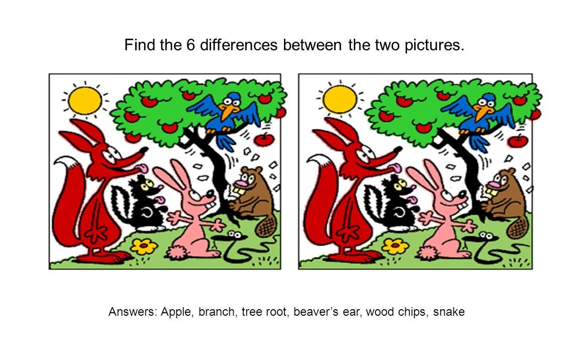 Find the 6 differences between the two pictures. Answers: Apple, branch, tree root, beavers ear, wood chips, snake