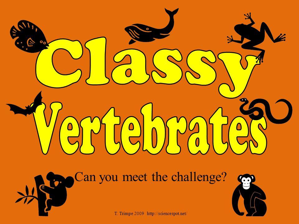 Can you meet the challenge T. Trimpe 2009 http://sciencespot.net/