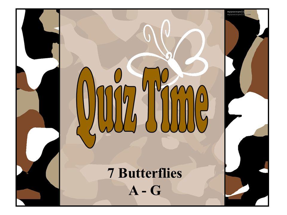 7 Butterflies A - G