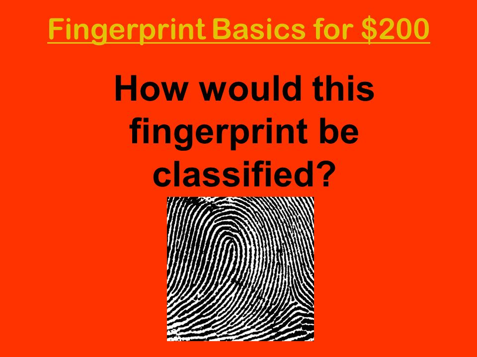 Fingerprint Basics for $200 How would this fingerprint be classified?