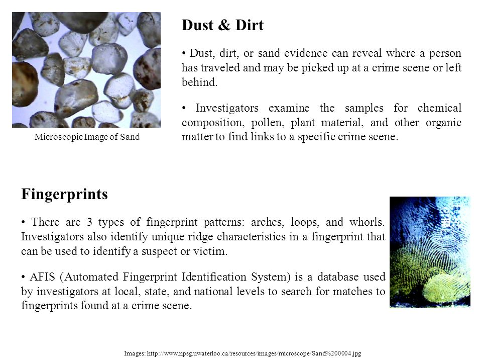 Images: http://www.npsg.uwaterloo.ca/resources/images/microscope/Sand%200004.jpg Dust & Dirt Dust, dirt, or sand evidence can reveal where a person ha