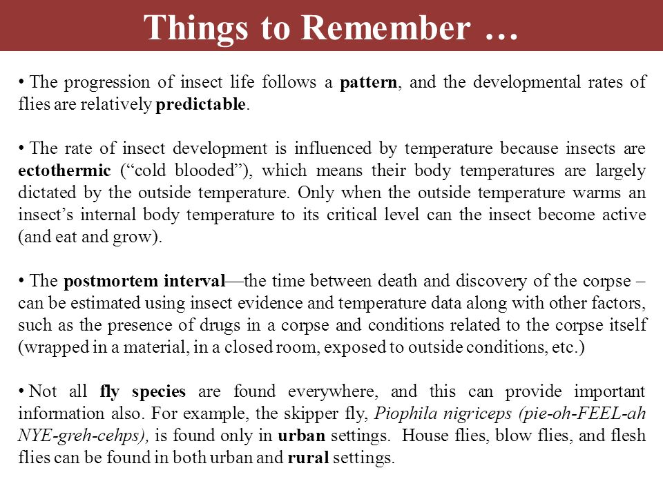Things to Remember … The progression of insect life follows a pattern, and the developmental rates of flies are relatively predictable. The rate of in