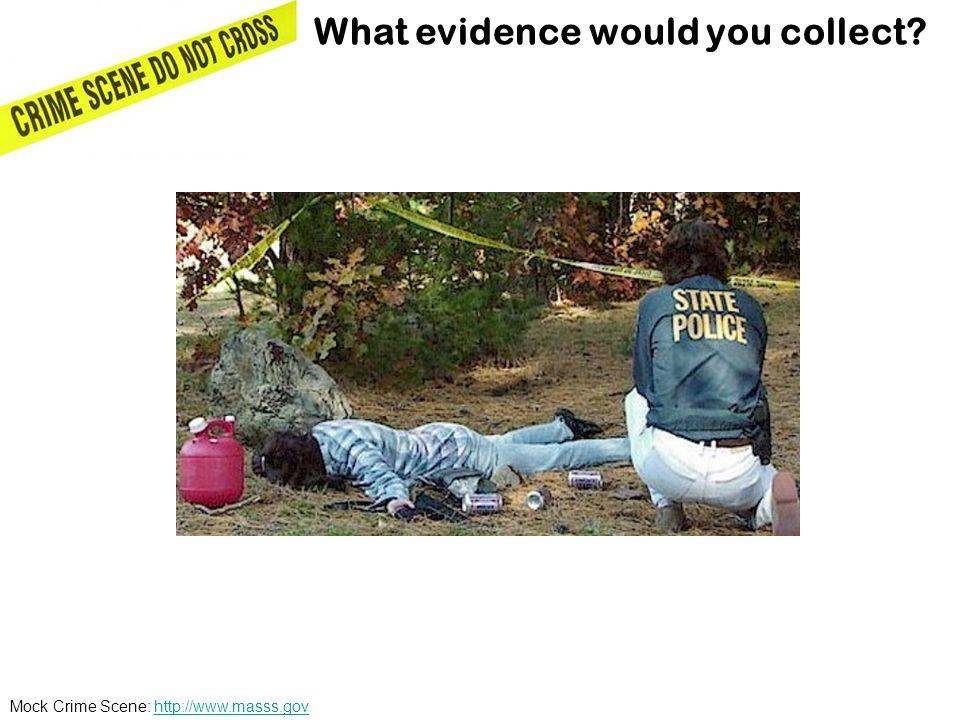 Mock Crime Scene: http://www.masss.govhttp://www.masss.gov What evidence would you collect?