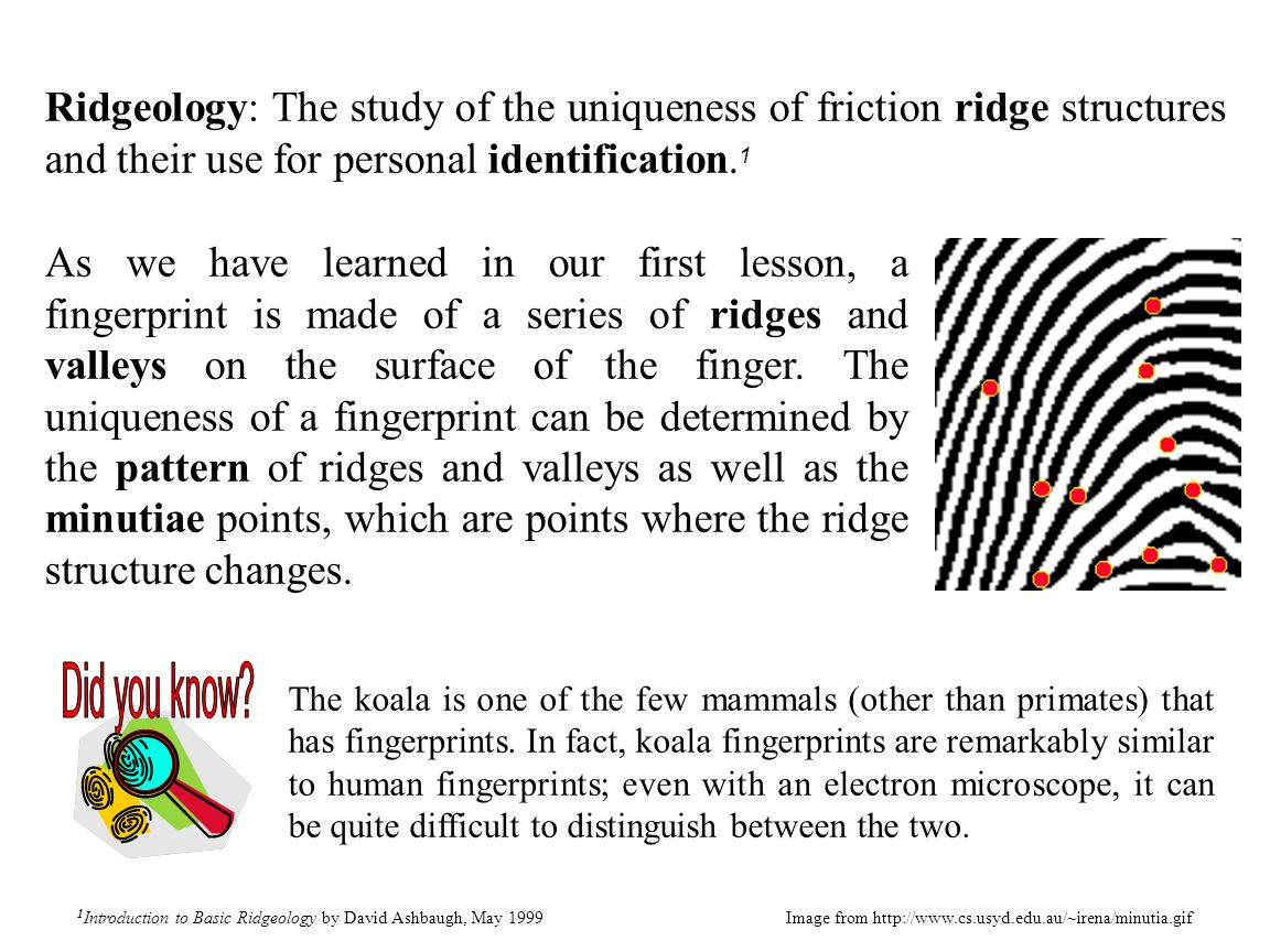 Ridgeology: The study of the uniqueness of friction ridge structures and their use for personal identification. 1 1 Introduction to Basic Ridgeology b