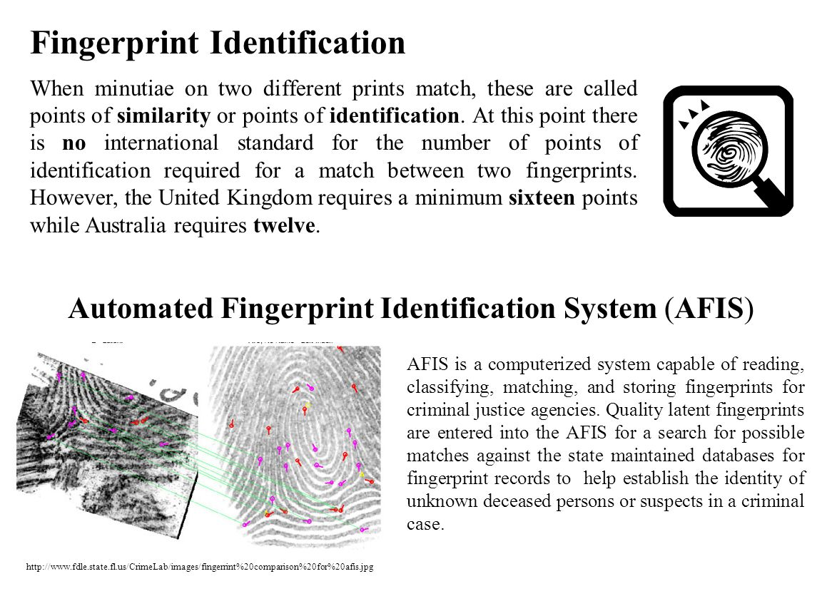 Fingerprint Identification When minutiae on two different prints match, these are called points of similarity or points of identification. At this poi