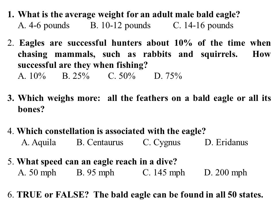 1.What is the average weight for an adult male bald eagle.
