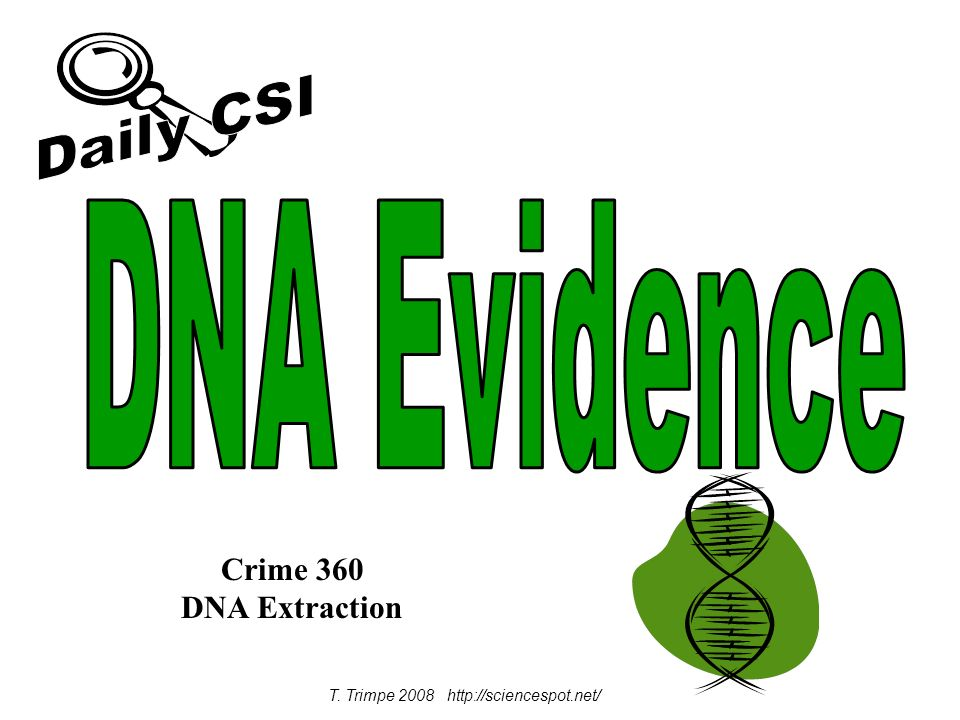 T. Trimpe 2008 http://sciencespot.net/ Crime 360 DNA Extraction