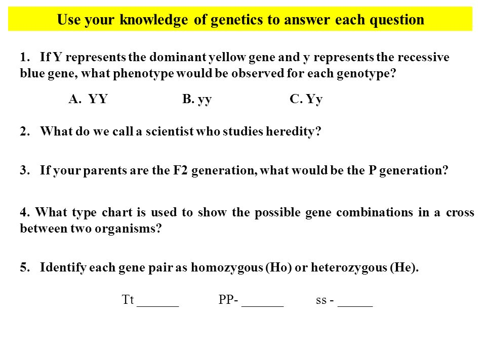 Use your knowledge of genetics to answer each question 1.