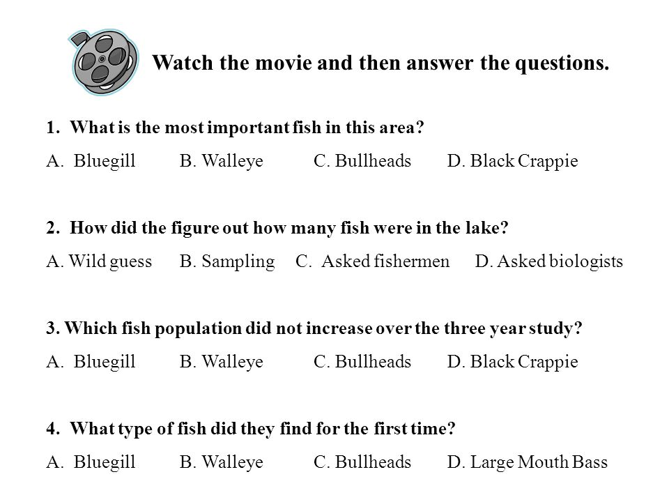 1. What is the most important fish in this area. A.